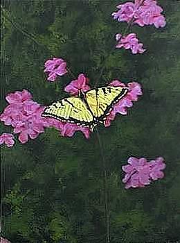 Butterfly by Jesska Hoff