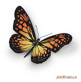 Butterfly by Joe Roselle