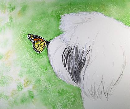 Butterfly Kissed Sheepdog by Carol Blackhurst