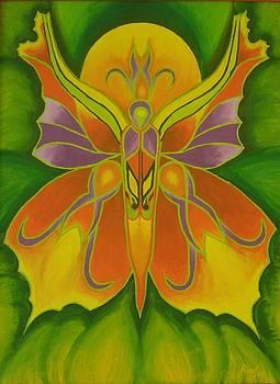 Butterfly of dreams by Beata Rosslerova