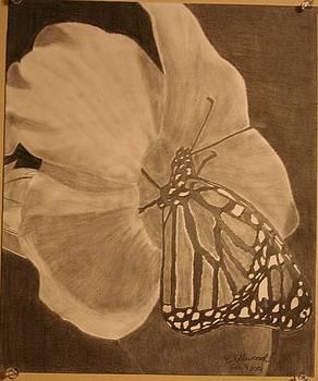 Butterfly Piece by Brandy LeBlue