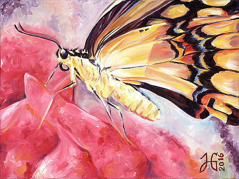 Butterfly Portrait on Pink by Heather Griffin