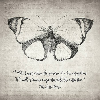 Zapista Zapista - Butterfly Quote - The Little Prince