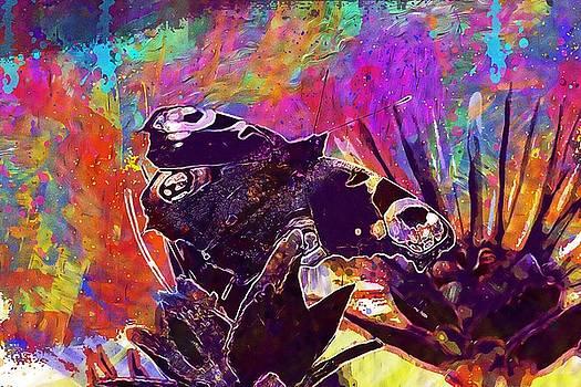 Butterfly Summer Natural Flower  by PixBreak Art