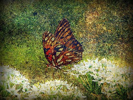 Butterfly Tapestry by Dottie Dees
