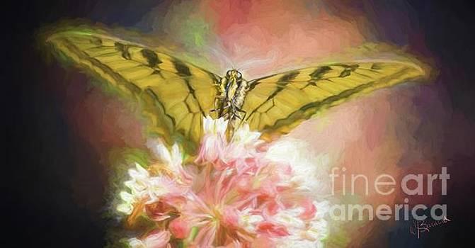 Butterfly by Warrena J Barnerd