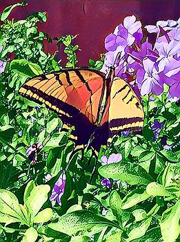 Butterfly Welcome by Patricia Rex