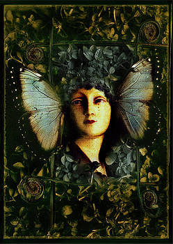Butterfly Woman by David Chasey