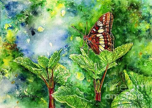 Butterfly Wonder by Cynthia Pride