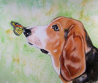 Butterfly Kissed Basset Hound by Carol Blackhurst