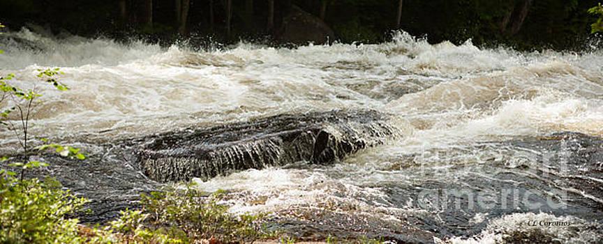 Buttermilk Falls Bubbles by Carol Lynn Coronios