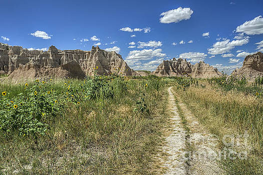 Buttes of the Badlands by Scott Wood