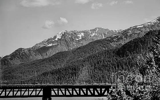 Bw Rail Alaska  by Chuck Kuhn