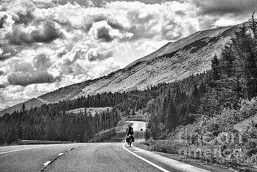 BW Road Bicycle Alaska by Chuck Kuhn