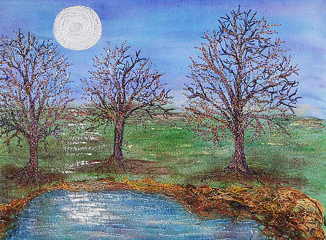 Ana Sumner - By the Moon Light