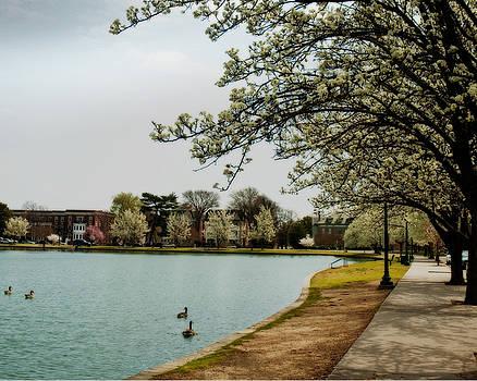 Byrd Park in Spring by Cindy Adams