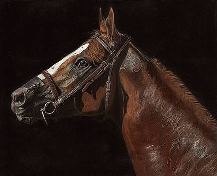 CA Chrome - Awesome Again Limited Edition Prints by Sue Ziegler