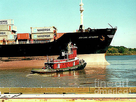 Container Ship with Tugboat on the Mississippi River, New Orleans by Merton Allen