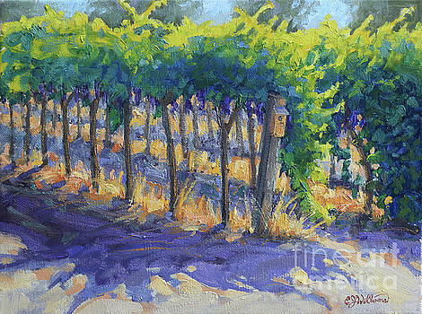 Cabernet Rows by E Williams