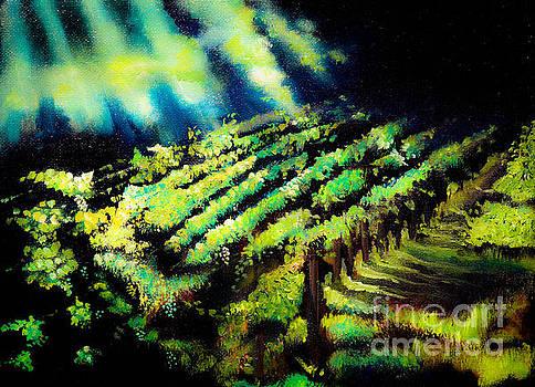 Cabernet Sauvignon at Dusk - Cartecay Vineyards - Ellijay by Jan Dappen