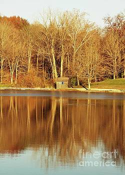 Cabin by the Lake by Don Kenworthy