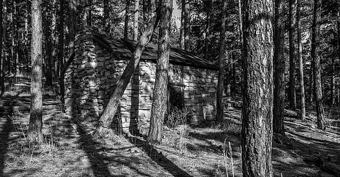 Cabin In The Forest In Black And White by Michael Putthoff