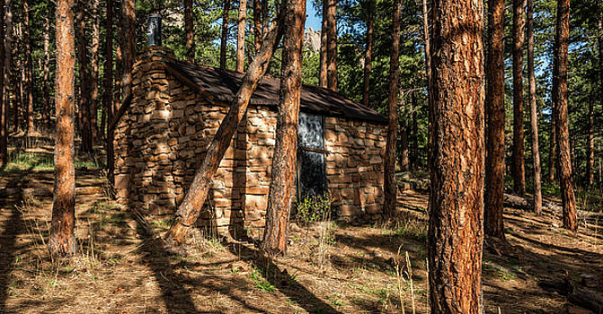Cabin In The Forest by Michael Putthoff