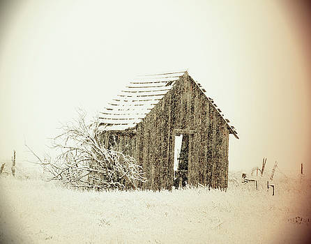 Cabin in the Storm by Nadine Berg