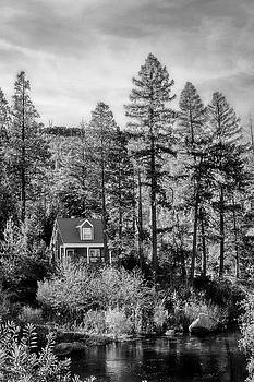 Cabin In The Woods BW by Sennie Pierson