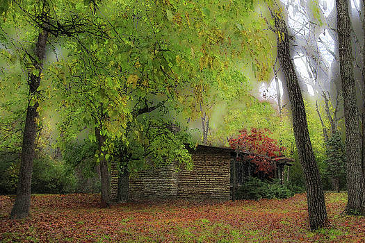 Cabin In The Woods by Cedric Hampton