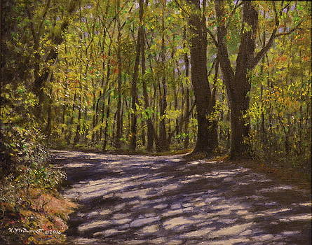 Cabin Road by Kathleen McDermott