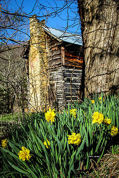 Cabin Spring by Dale R Carlson