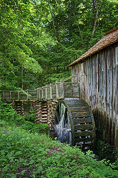 Nikolyn McDonald - Cable Mill - Cades Cove - Tennessee - Vertical