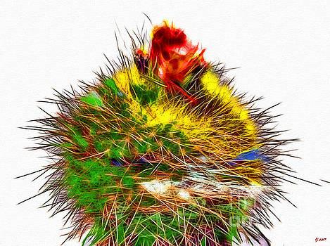 Cacti by Daniel Janda