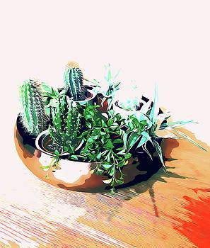 Cacti in a Copper Pot by Uma Gokhale