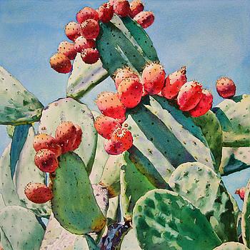 Cactus Apples by Kathleen Ballard
