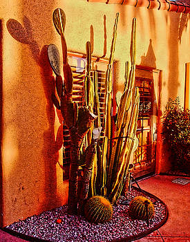 Cactus Cafe by Bruce Wood