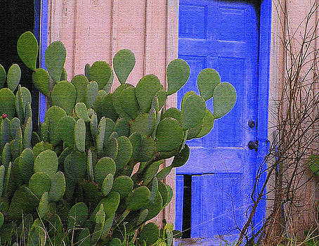 Cactus Door by Walter E Koopmann