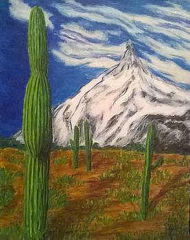 Cactus Mountian by John Fierro