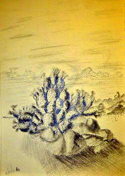 Cactus Sketch Thumbnail Prep WIP by Antonia Citrino