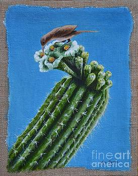 Cactus Wren by Mary Rogers