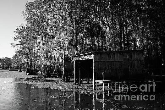 Caddo Lake Deck by Iris Greenwell