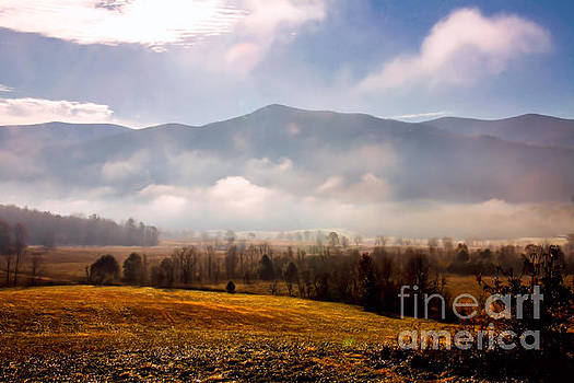 Cades Cove Misty Morn by Marilyn Carlyle Greiner