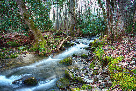 Cades Cove Smoky Mountains Stream by Carol Mellema
