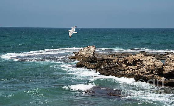 Caesarea by Mae Wertz