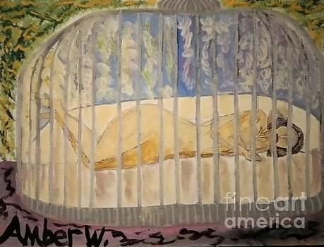 Caged Women by Amber Waltmann