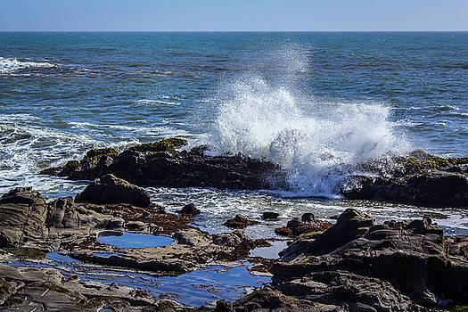 Cal Coast Wave Crash 2 by Randy Bayne