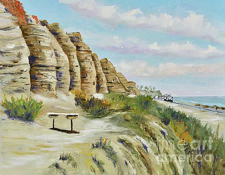 Calafia Beach Trail by Mary Scott