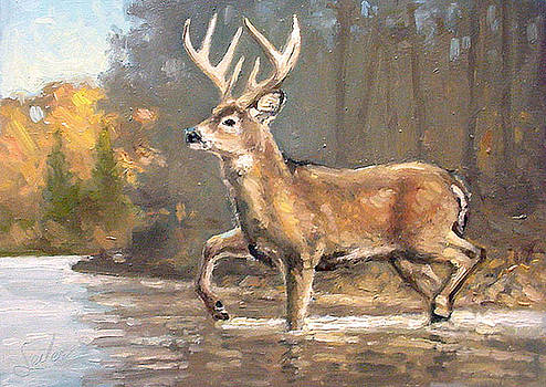 Calculating the Risk - Whitetail Crossing by Larry Seiler