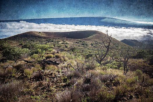 Caldera on the flank of Mauna Kea Hawaii by Mary Lee Dereske